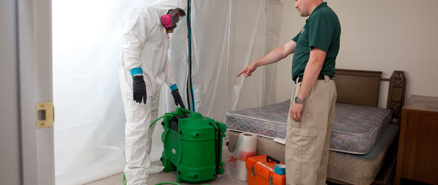 Koreatown, CA mold removal process